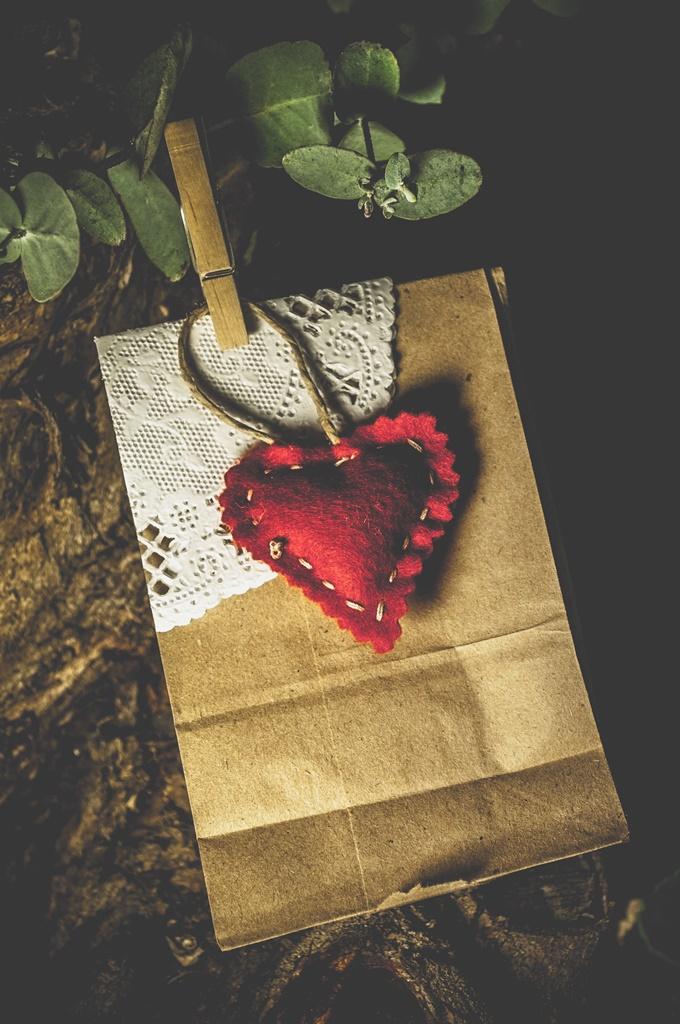Guest Favors paper bag