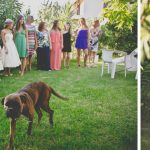 Summer elegant wedding