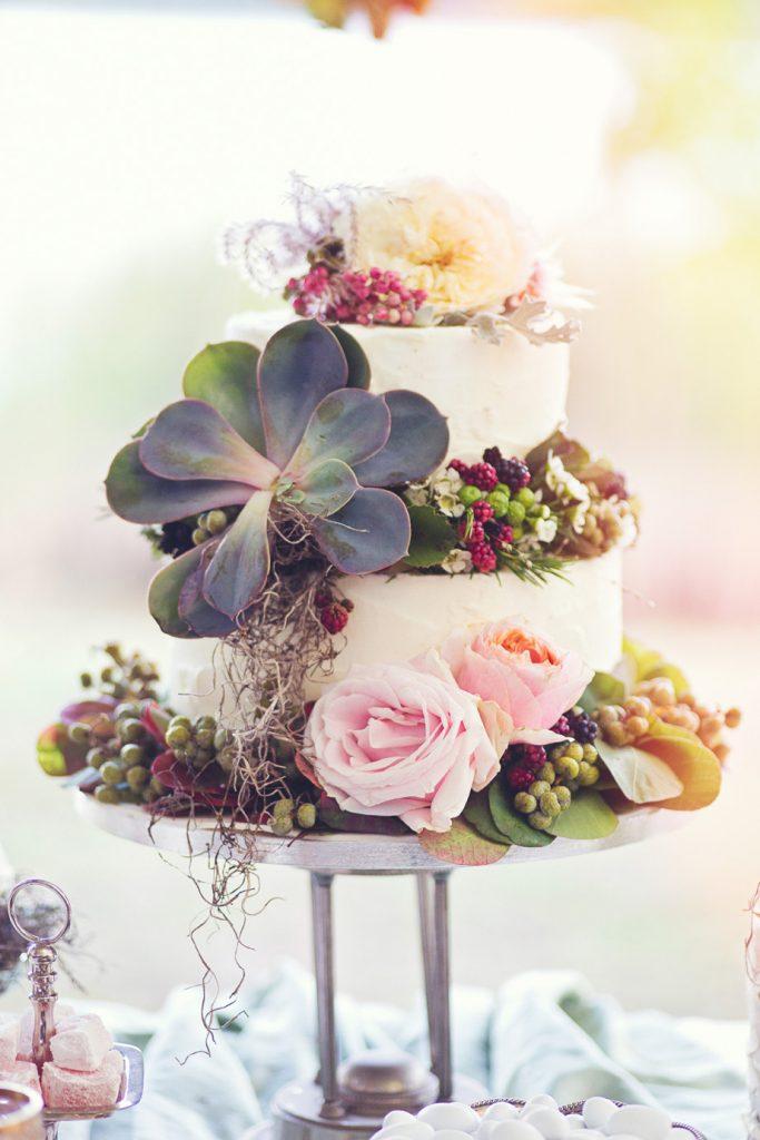 rustic τούρτα γάμου με παχύφυτα
