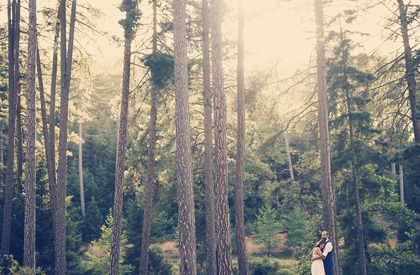 Day after wedding photoshoot in the woods