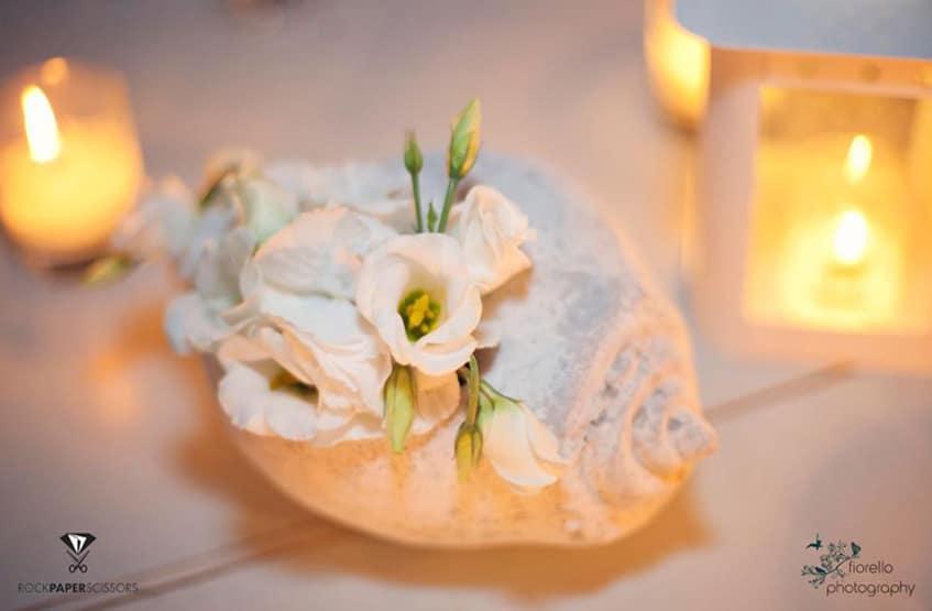 wedding seashell decoration