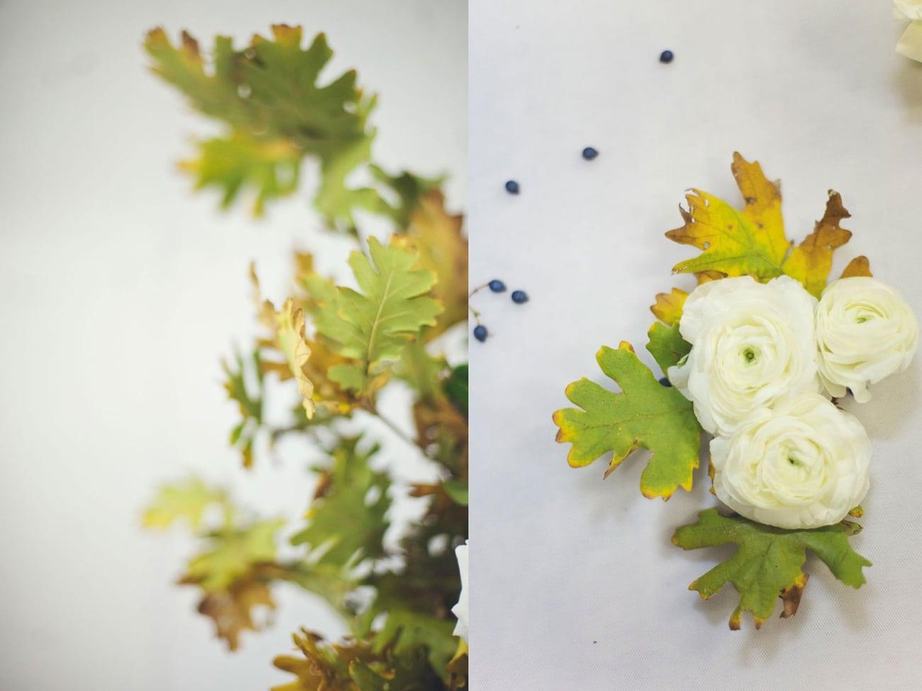 Λουλούδια λευκού γάμου νεραγκούλες